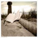 أحلام الخليفة .. كتاب عن الأحلام في ثقافة المسلمين